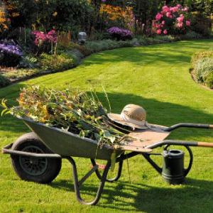 Speciale giardino